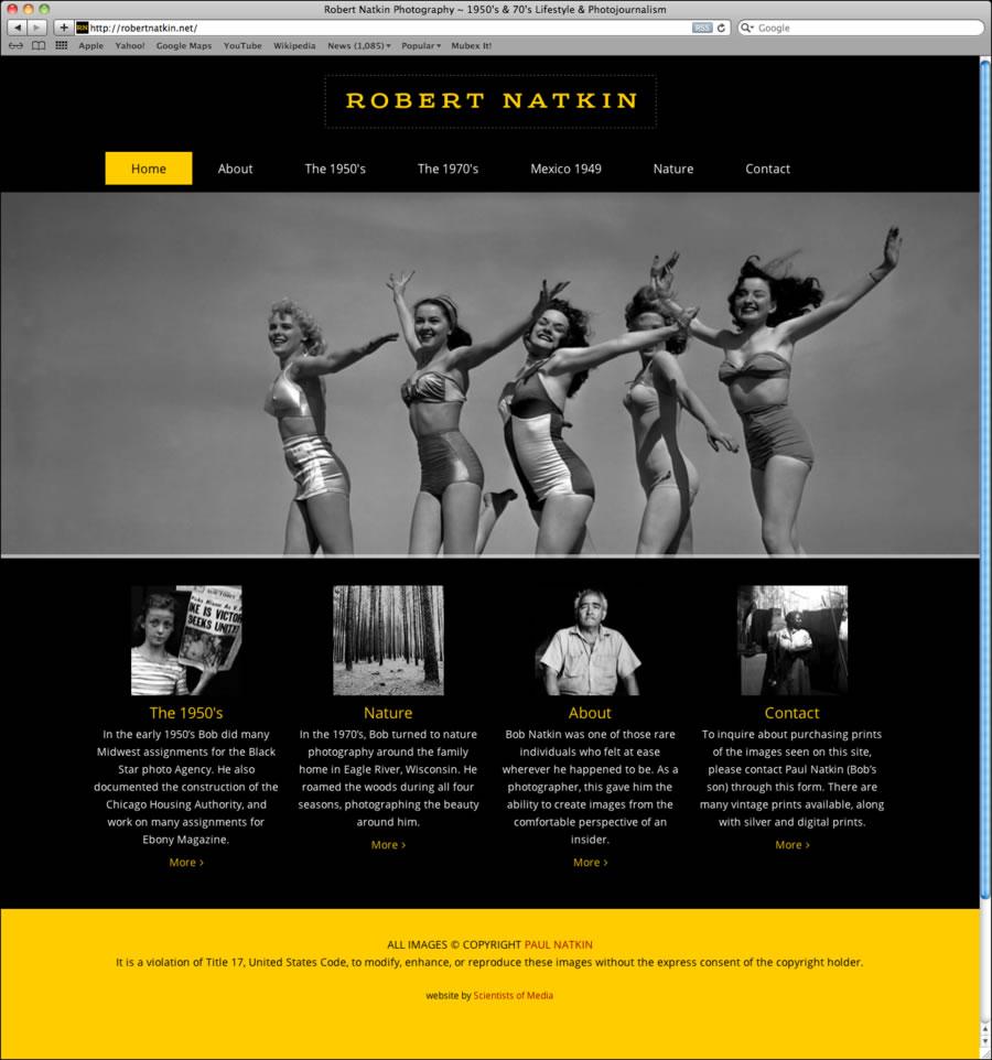 Robert Natkin WordPress Website #1