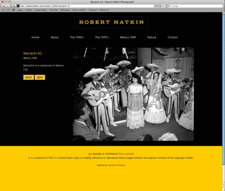Robert Natkin WordPress Website #2