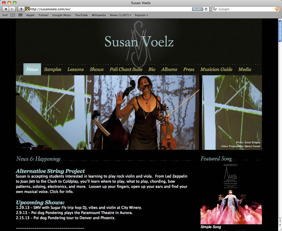 Susan Voelz Website Design & Programming #2