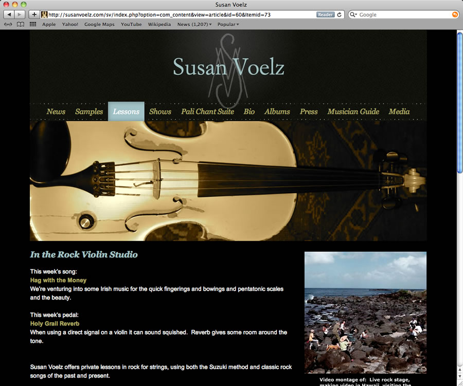 Susan Voelz Website Design & Programming #3