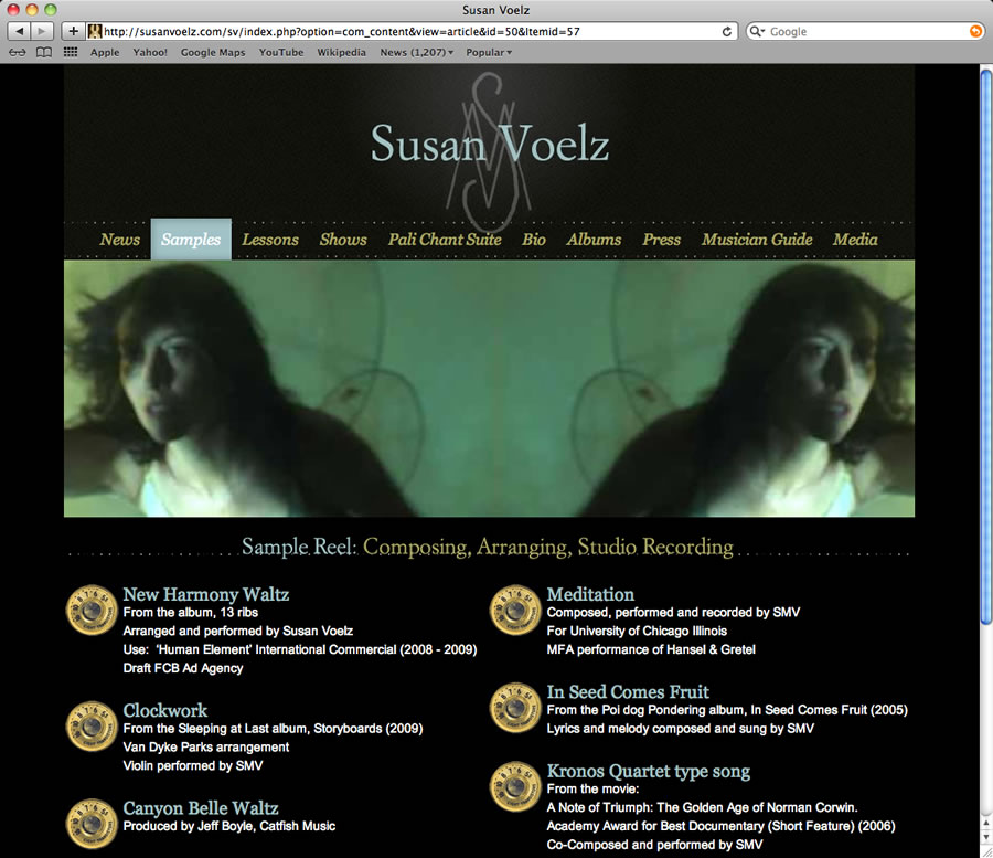 Susan Voelz Website Design & Programming #5