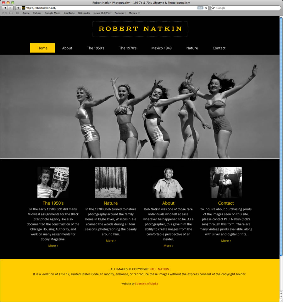 Robert Natkin WordPress Website #1
